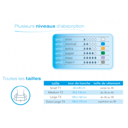 amd absorptions et tailles